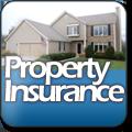 icon-property