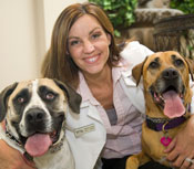 What to Know About Dog Boarding: Orange County Kennels