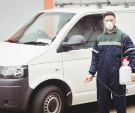 53818804 - handyman with insecticide standing in front of his van